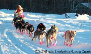 24-time Iditarod finisher DeeDee Jonrowe at the starting line at Deshka Landing. By Donna Quante/Husky Productions