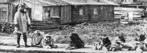 Jujiro Wada and his dogs, Dawson City