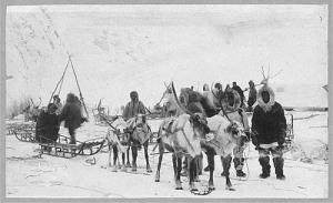Reindeer team in Alaska