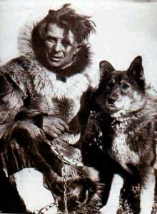 Legendary musher Leonhard Seppala, for whom the 1967 Iditarod race was named, with his leader, Togo.
