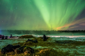 Northern lights over the Yentna River. [Photo by Tom Jamgochian]