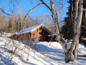 Seppala's cabin again