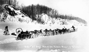 Mail driver on the Yukon River