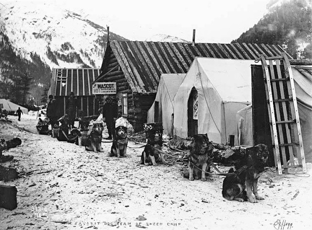 "Hegg, Eric A., 1898: Sheep Camp on the Chilkoot trail during the Klondike Gold Rush. Advertisement on log cabin reads: ""The Mascot. Hot drinks and meals, lunches and beds."" Caption on image: ""The favorite dog team of Sheep Camp"""