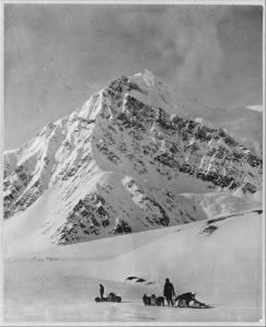 Dog teams on Mount McKinley