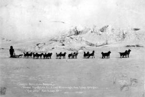 Leonhard Seppala's racing Siberian Husky team