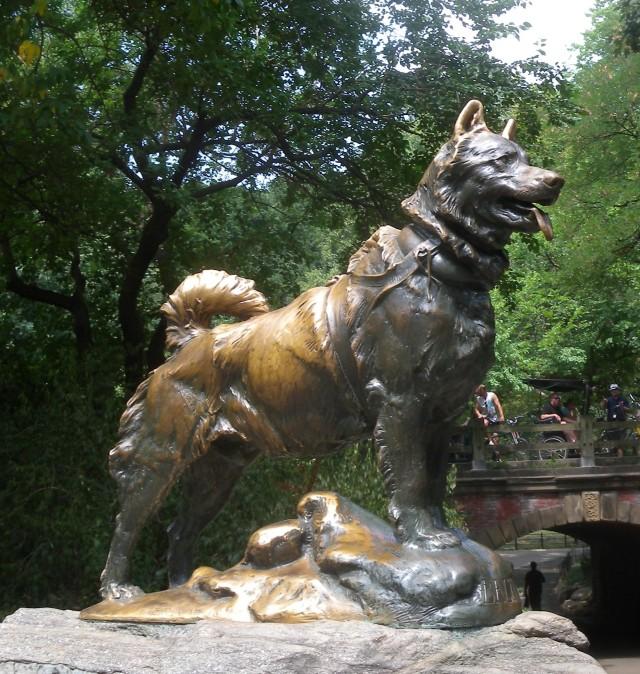 Balto Central Park