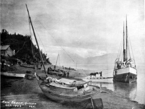 38. Knik_Beach_Alaska_Oct_1906 copy